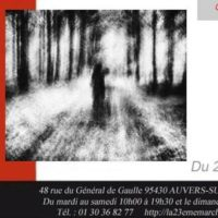 Exposition Sophie Patry