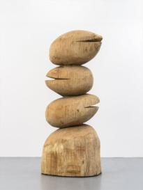 David Nash : The Many Voices of the Trees
